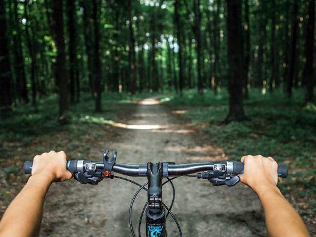 bike_0001_Warstwa 2