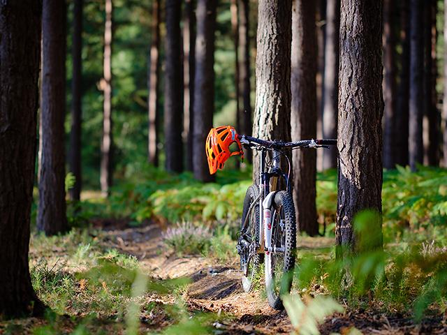 bike_0002_AdobeStock_232147556